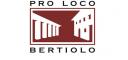 logo-bertiolo